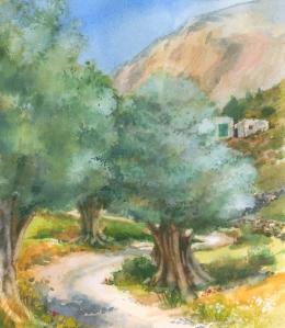 Olive Grove, Kalymnos