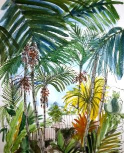 Inside the Tropical Centre