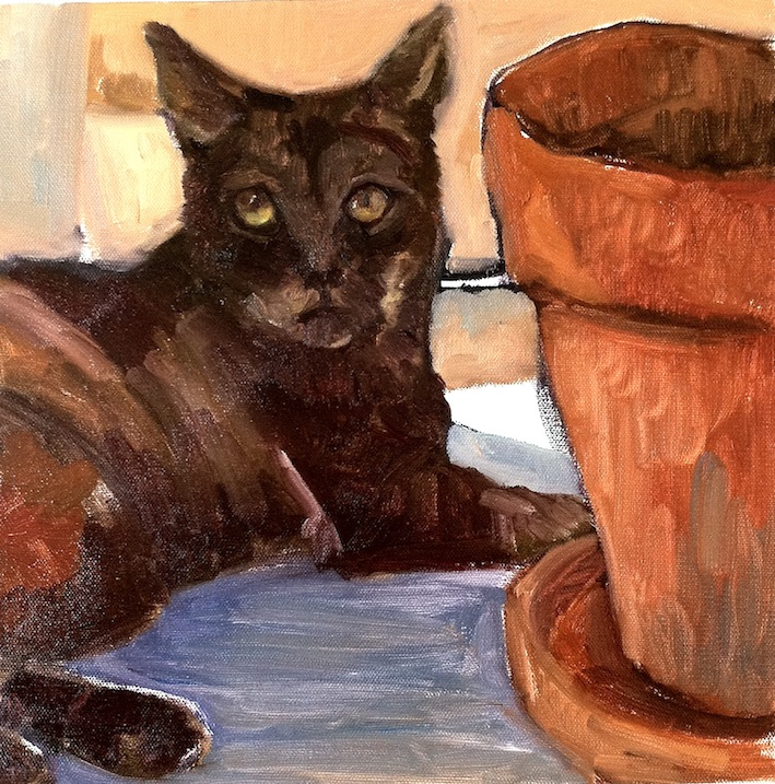 The Potter's Cat by Glenys Cullimore