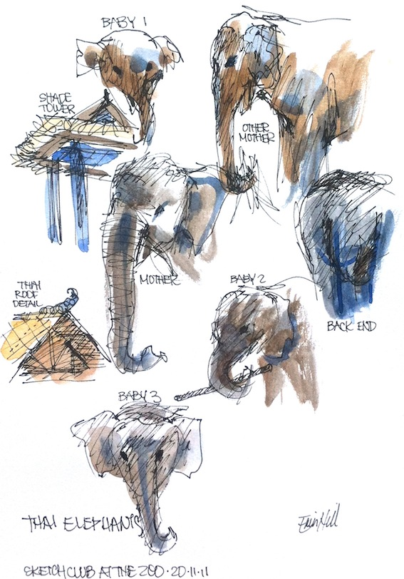 Elephants, Mothers & Babies
