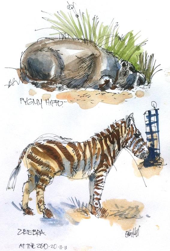 Hippo & Zebra