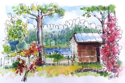 From the verandah, Bilpin Springs Lodge