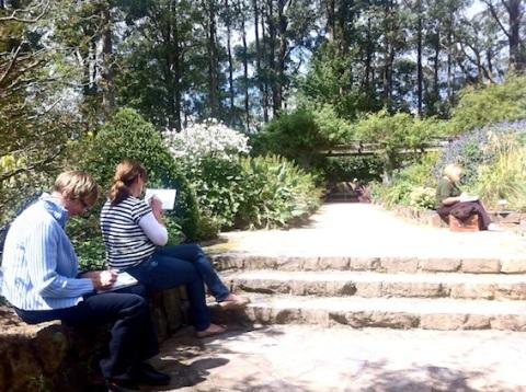 Sketching day at Mt Tomah Gardens