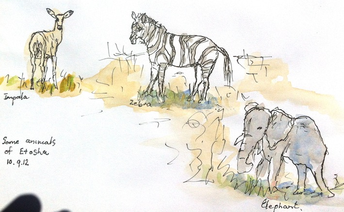 Jenny C, African animals