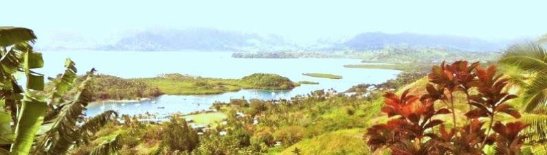 View over Savusavu