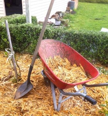 Good old wheelbarrow. Te Horo