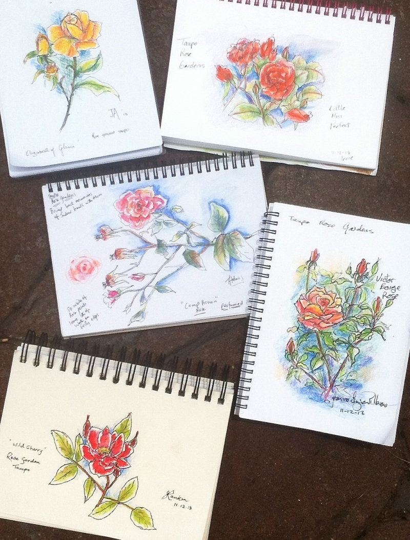 Rose Garden Sketches