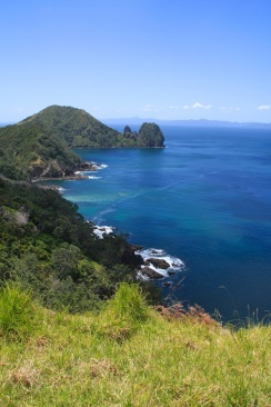 Sugarloaf, Coromandel Walk NZ