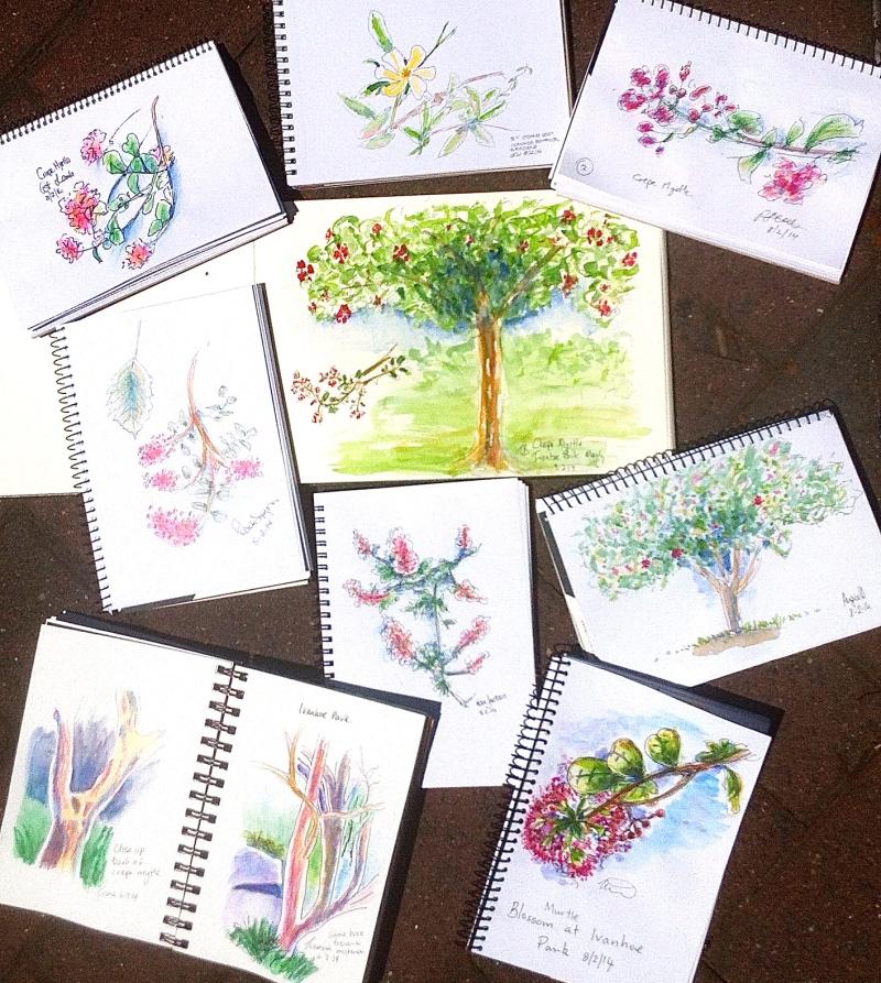 Ivanhoe Park sketches