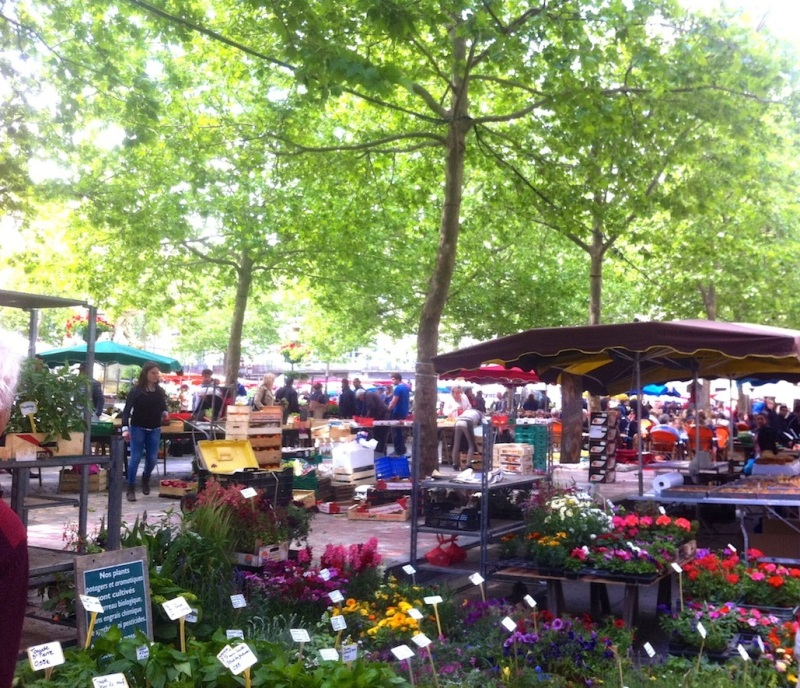 Morning Markets in Carcassonne