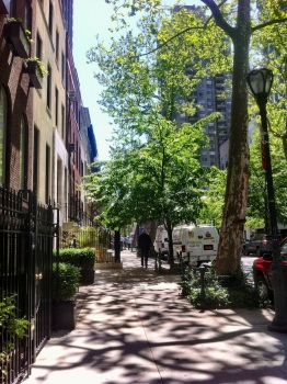 NYC tree lined streets