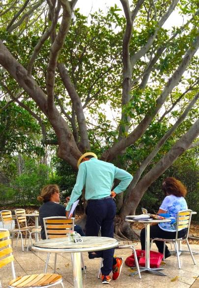 Great tree sketch jpg
