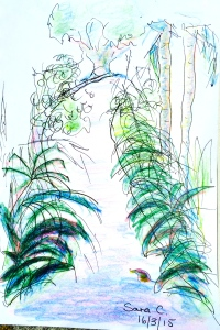 Monday one pathway sketch