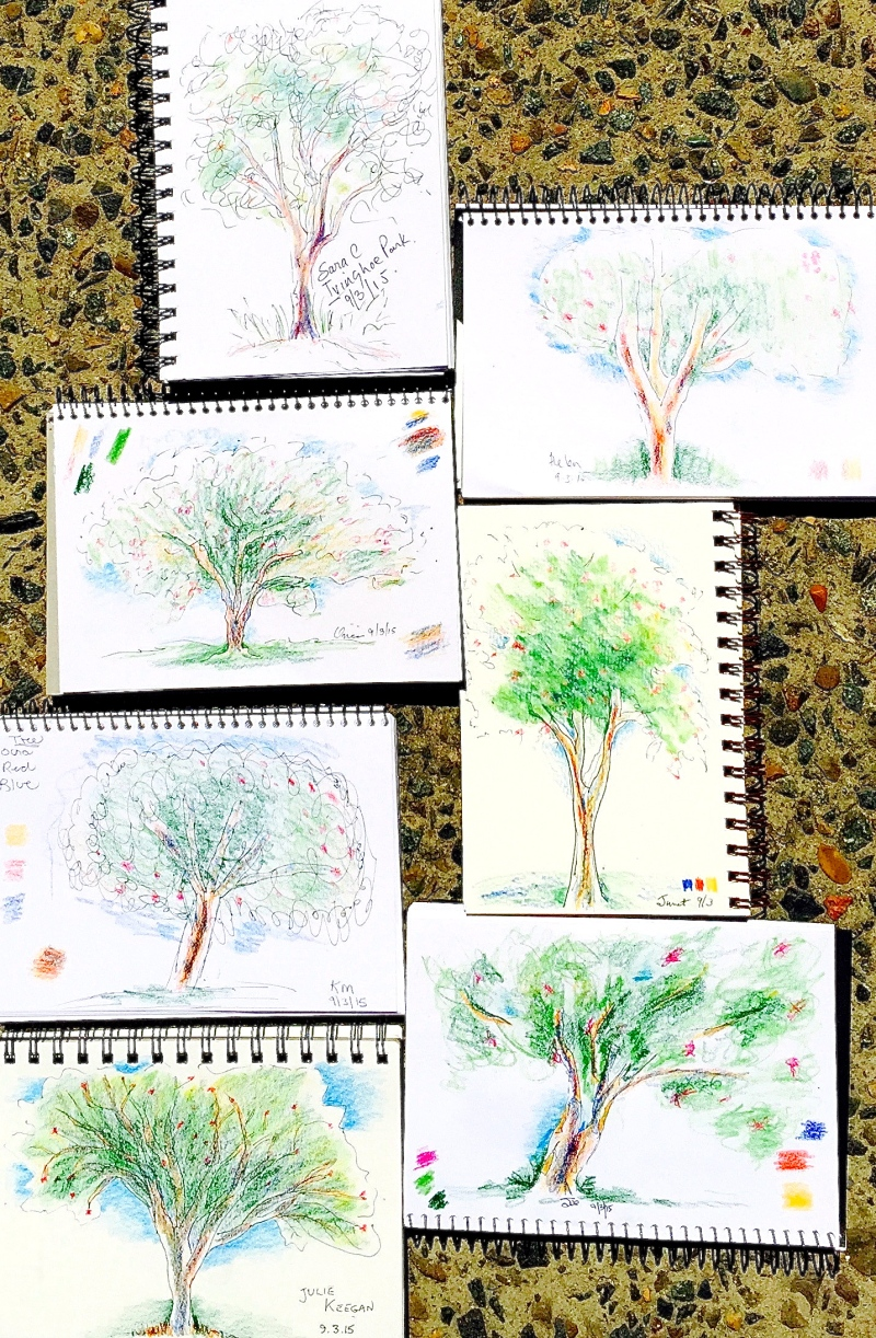 Monday tree sketches