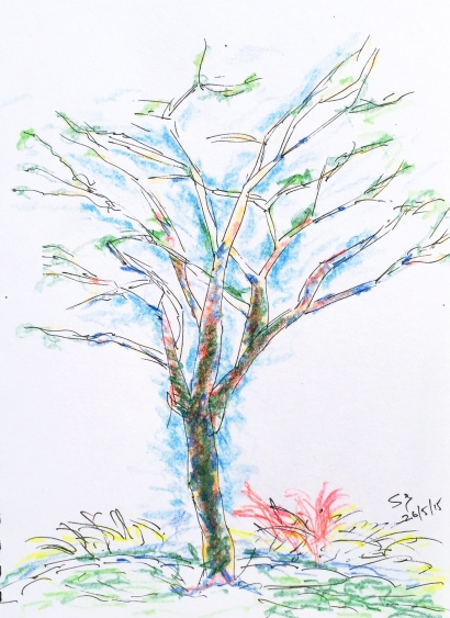 Monday new Sketchers. Tree sketch