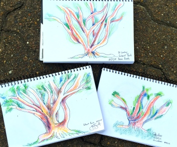 Monday New Sketchers.Tree sketchesjpg