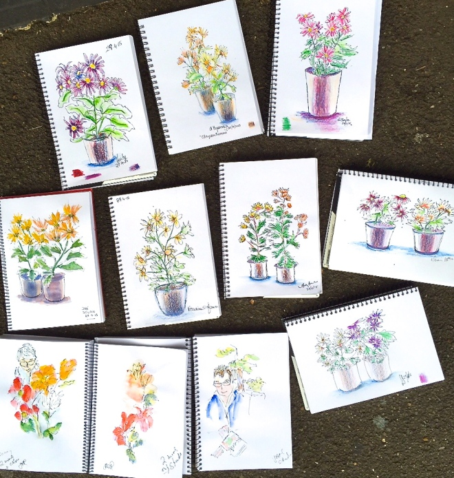 Wednesday. Flower pots