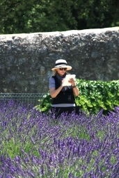 Friday. Standing in lavender