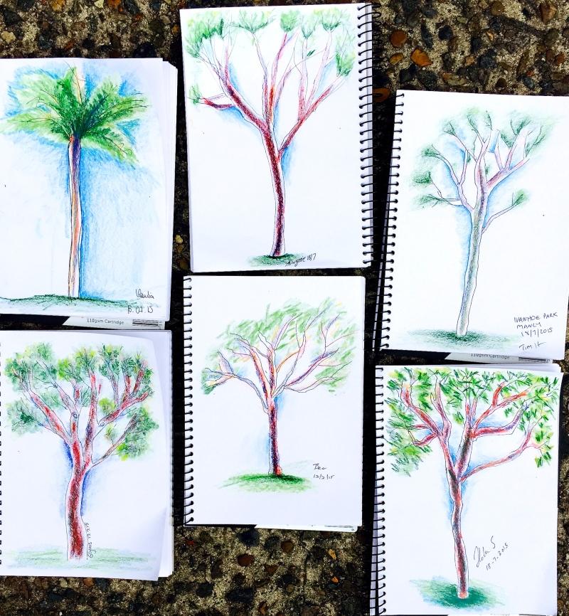 Saturday New. Ivanhoe Park trees
