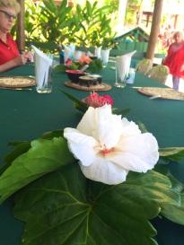 Friday Fiji. Table decor