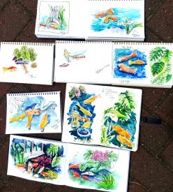 Fri Gen. The koi pond sketches