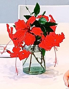 Sat New. Red hibiscus