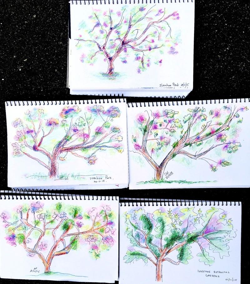 SatNew. jacaranda Sketches