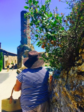 Sue at Minerve