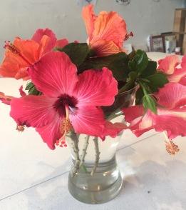 hibiscus-stilllife
