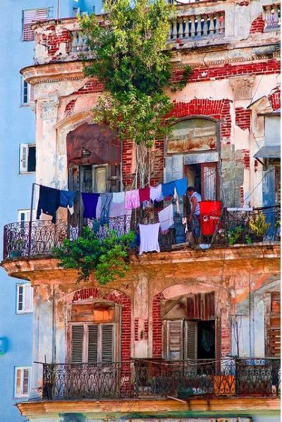 Bohemian Havana